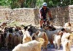 2009 Cez Himaláje do Ladakhu - na bicykloch