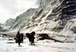 1997 Expedícia Kanchenjunga